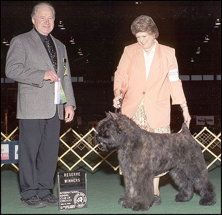 Arkie at 6 months, his first show